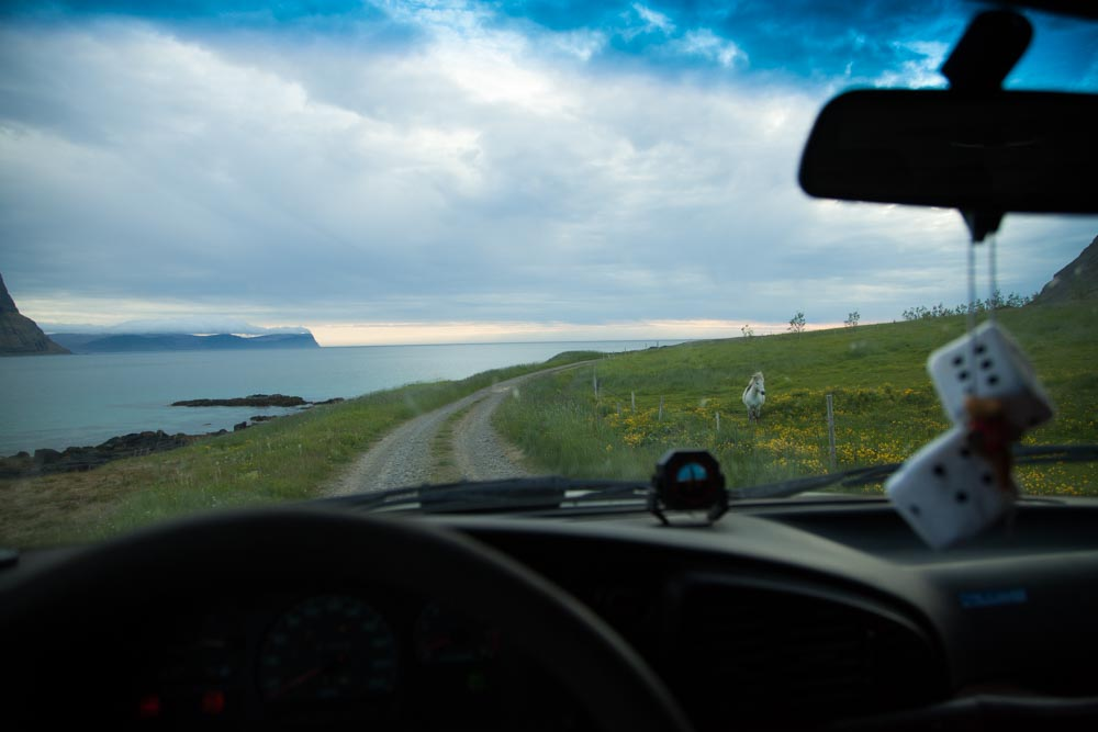 Westfjords roadtrip